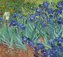 Vincent Van Gogh - Irises, 1889 by famousartworks