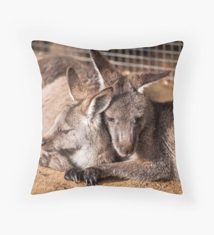 Cuddling Kangaroos Throw Pillow