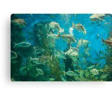 Cool Aquarium Canvas Print