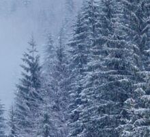 Snow-covered fir forest Sticker