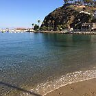Catalina Beach by swylie