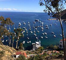 Avalon Bay Catalina Island by swylie