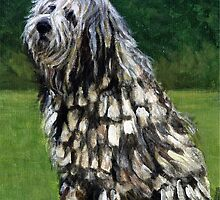 Bergamasco Dog Portrait by Oldetimemercan
