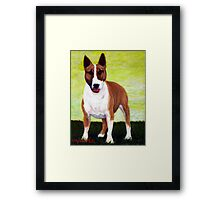 Bull Terrier Dog Portrait Framed Print