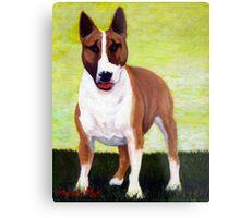 Bull Terrier Dog Portrait Metal Print
