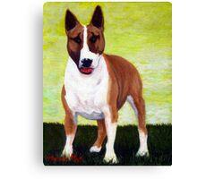 Bull Terrier Dog Portrait Canvas Print