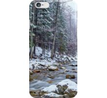 River flowing trough the forest on wintertime iPhone Case/Skin