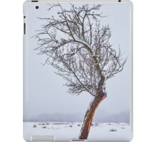 Lonely tree on snowy field iPad Case/Skin