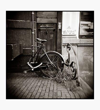 { rust + dust } Photographic Print