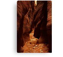 Wire Pass Slot Canyon, Utah Canvas Print