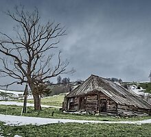 Landscape with abandoned wooden barn by naturalis