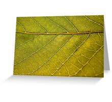 Micro Leaf Veins Greeting Card