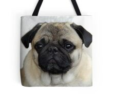 mops little dog Tote Bag