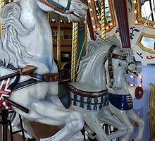 Edmonton Carousel by Camilla