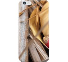 Lonely Ant iPhone Case/Skin