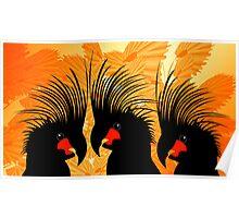 3 Palm Cockatoos Poster