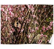 Birdhouse in the Flowering Plum Tree Poster