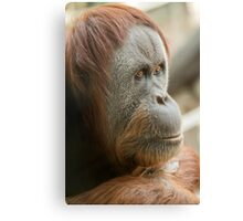 Monkey Business IV Canvas Print