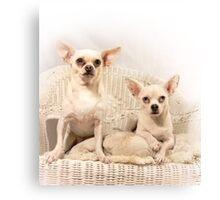 Chihuahua Gothic Canvas Print