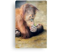 Moment of Thought Canvas Print