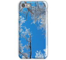 Snowy Winter Scene iPhone Case/Skin