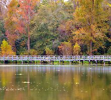 Autumn Over Water I by talprofit