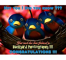 Backyard Photography Group Feature Banner Photographic Print
