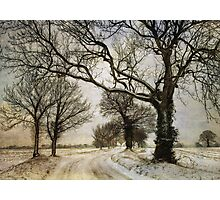A Frozen Morning Photographic Print