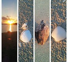 Friends, Sunsets and Shells by mellsie86