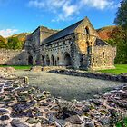 Valle Crucis Abbey by Ian Mitchell