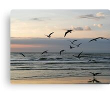 Seagulls Fly By Canvas Print