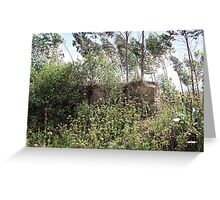 Fence Overtaken By Weeds and Trees Greeting Card
