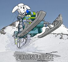 Bichon Freeze by AloftStudios