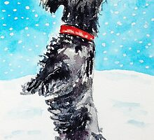 Angus the Scottie Dog Enjoying The Snow by archyscottie