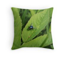 Colorful fly on a leaf Throw Pillow