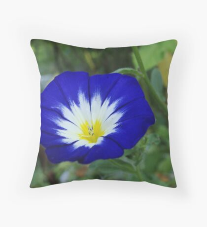 Blue pansy with white insides Throw Pillow