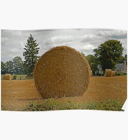 Haystack. Poster