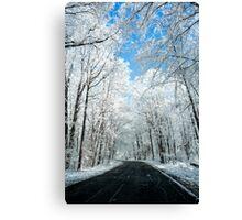 Snowy Winter Road Scene Canvas Print