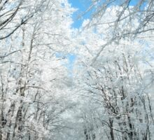 Snowy Winter Road Scene Sticker