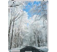 Snowy Winter Road Scene iPad Case/Skin