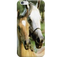 Horses of Beauty iPhone Case/Skin