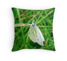 Butterfly in a meadow Throw Pillow