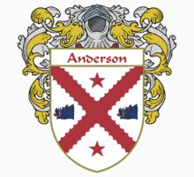 Anderson Coat of Arms/Family Crest by William Martin