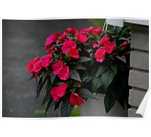 Summer Flowers in a Basket Poster