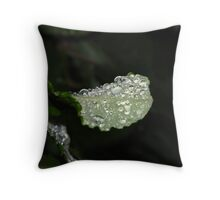 Droplets on leaf Throw Pillow