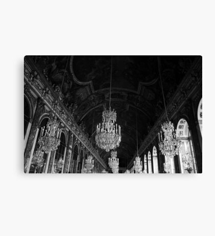 Hall of mirrors Canvas Print