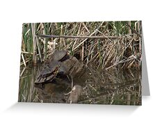 Painted turtles Greeting Card