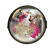 II: Life through a Porthole  by Zita
