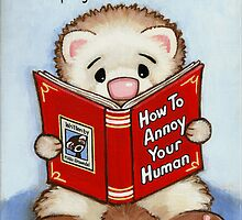 Annoy the Human by Shelly  Mundel