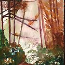 Redwoods by ClaraM